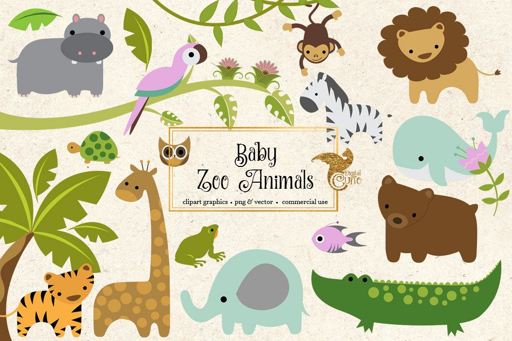 baby zoo animals clipart by digital cur design bundles rh designbundles net zoo animal clip art free zoo animal clip art free