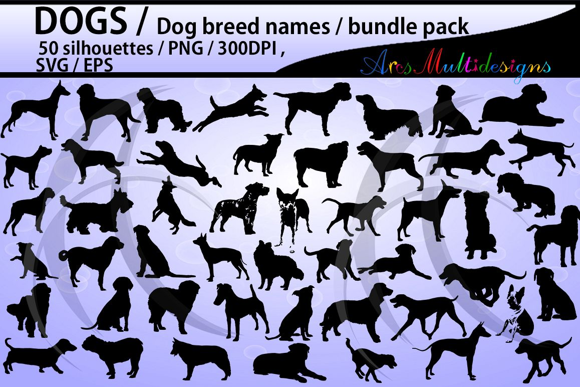 dog silhouette svg / 50 dog / dog breed names with pictures PNG / SVG / EPS / puppy/ Hq / vector / pets silhouette / animal silhouette example image