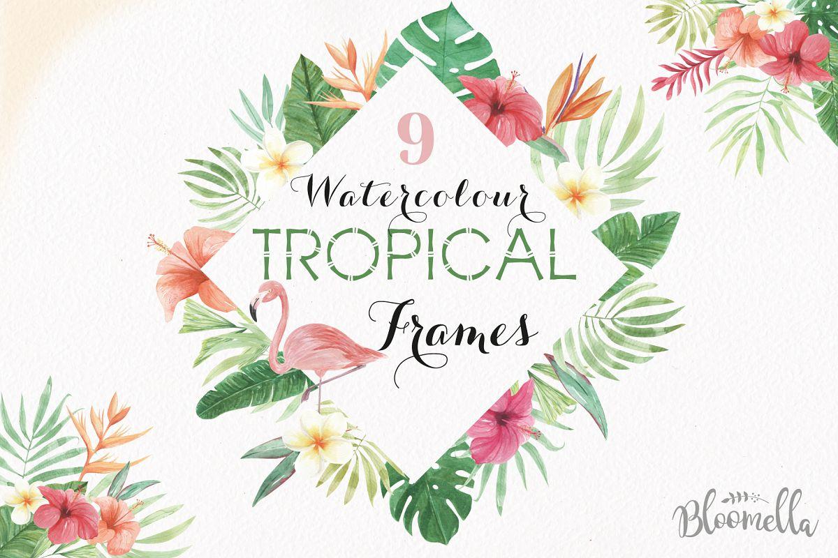 Tropical Watercolor Clipart Frames Bord | Design Bundles