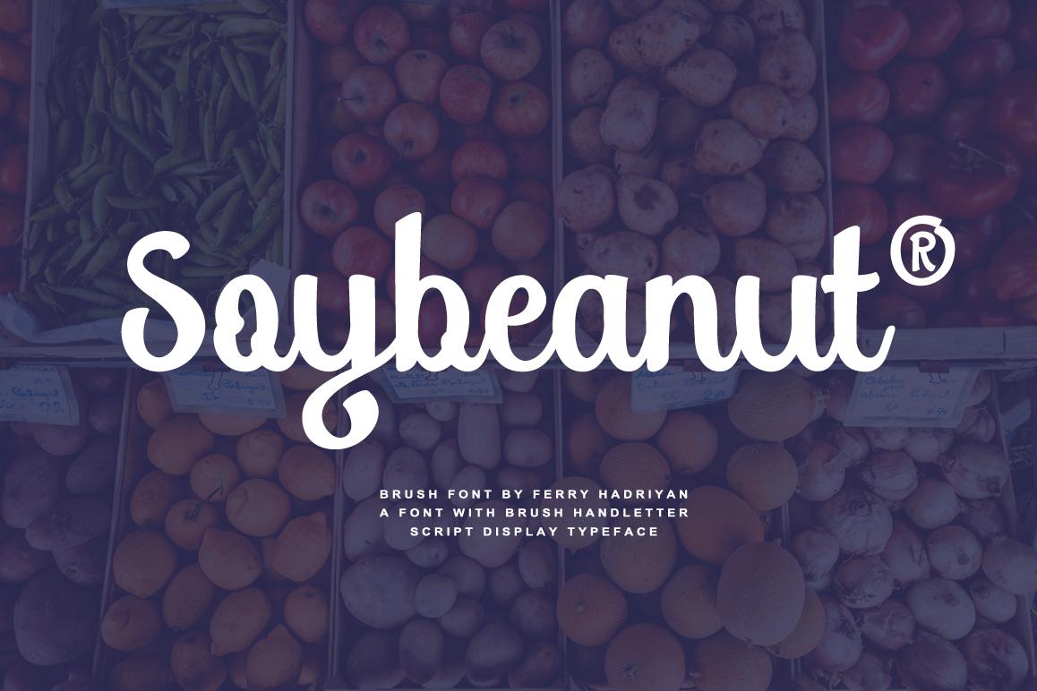 Soybeanut - Brush Script Font example image