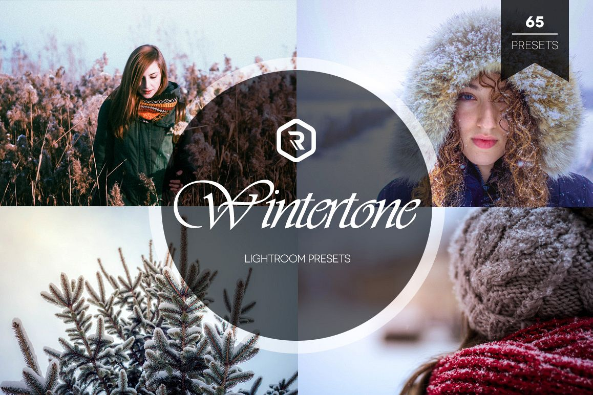 Wintertone Lightroom Presets example image