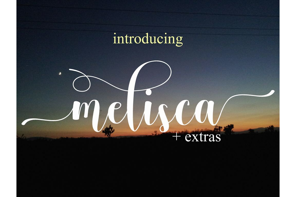 melisca example image