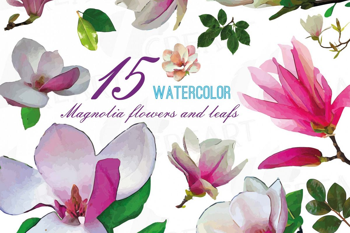 Watercolor pink magnolia flower and lea design bundles watercolor pink magnolia flower and leaf clip art pack magnolias clip art png mightylinksfo