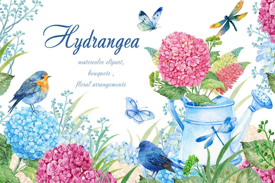 hydrangea watercolor clipart by clipart design bundles rh designbundles net hydrangea clip art images hydrangea clip art border free