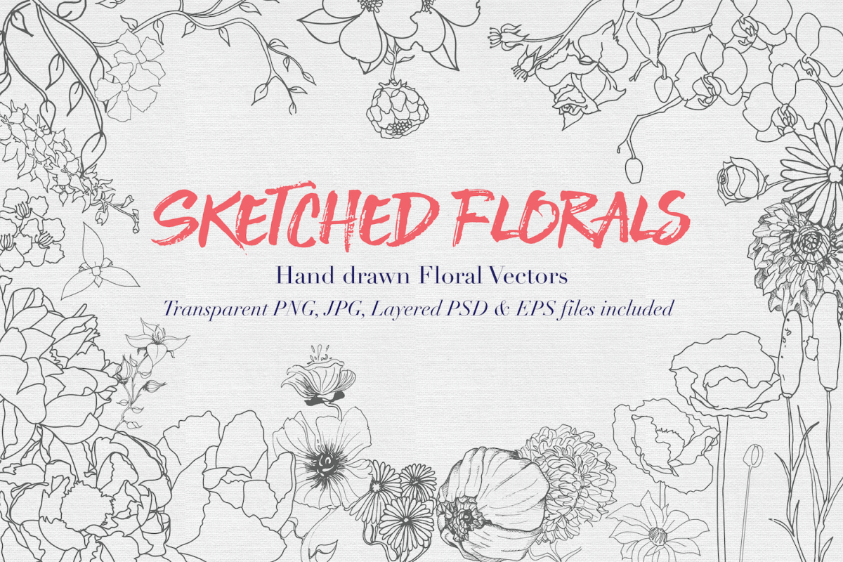 Hand drawn Sketched Flower Vectors example image