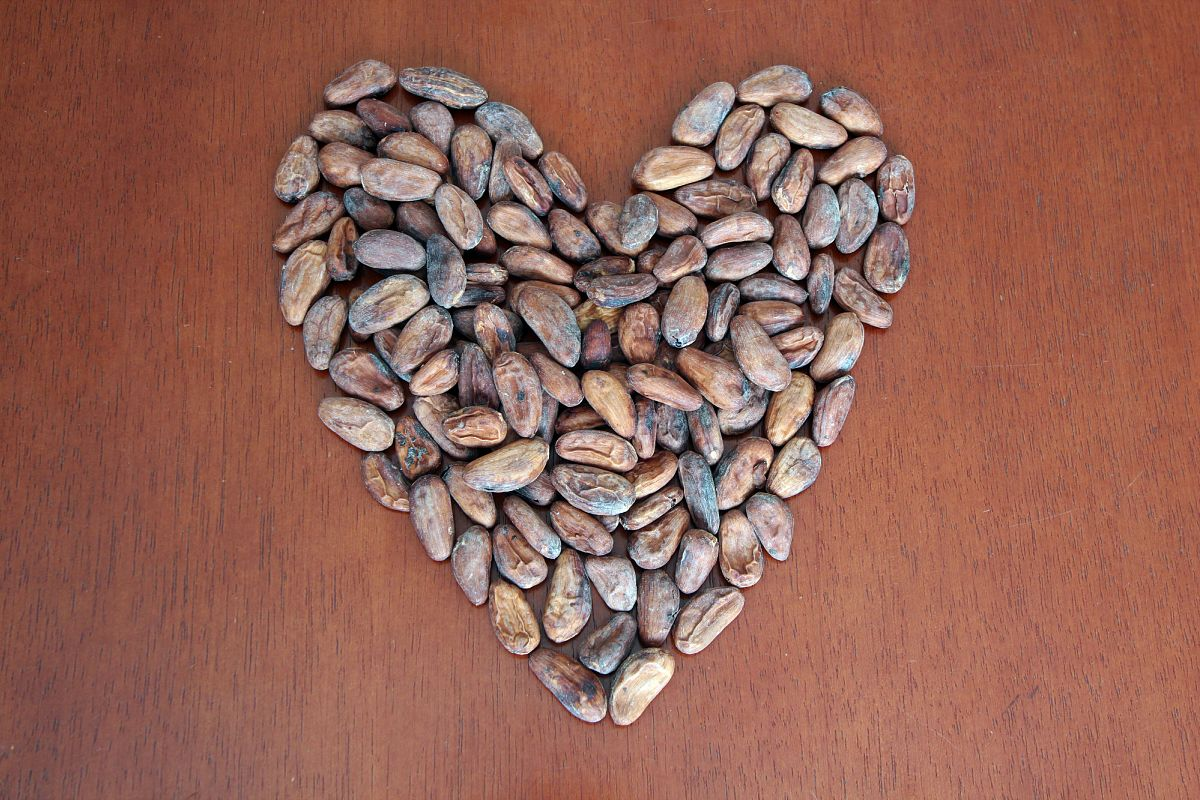 Cacao Beans in Heart Format example image