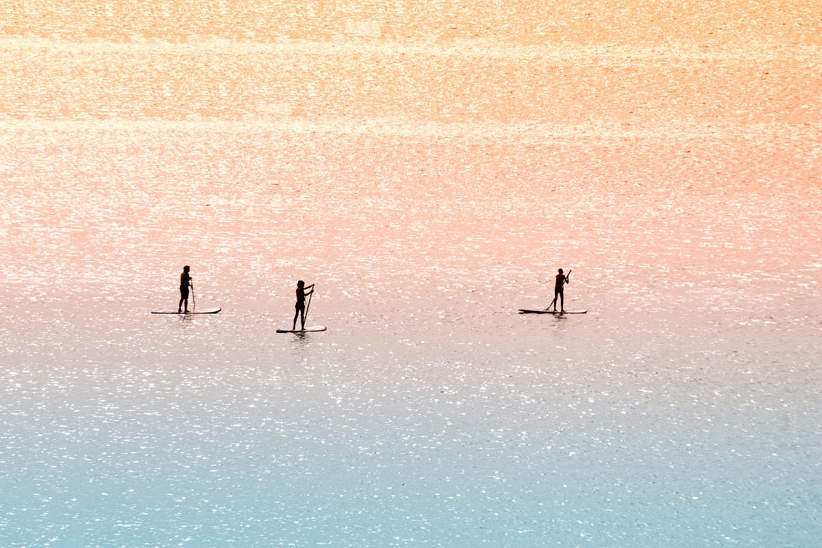 Standup paddle surfers example image