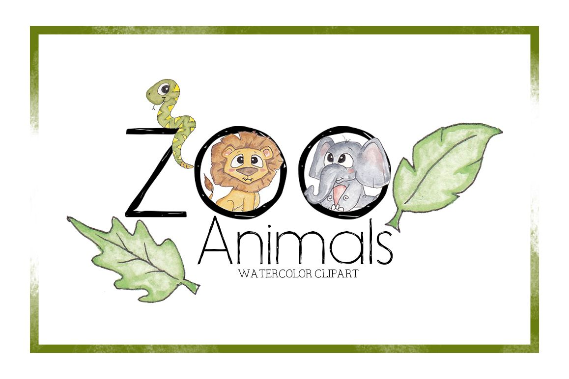 Zoo Clipart-Watercolor Clipart-Animal C | Design Bundles
