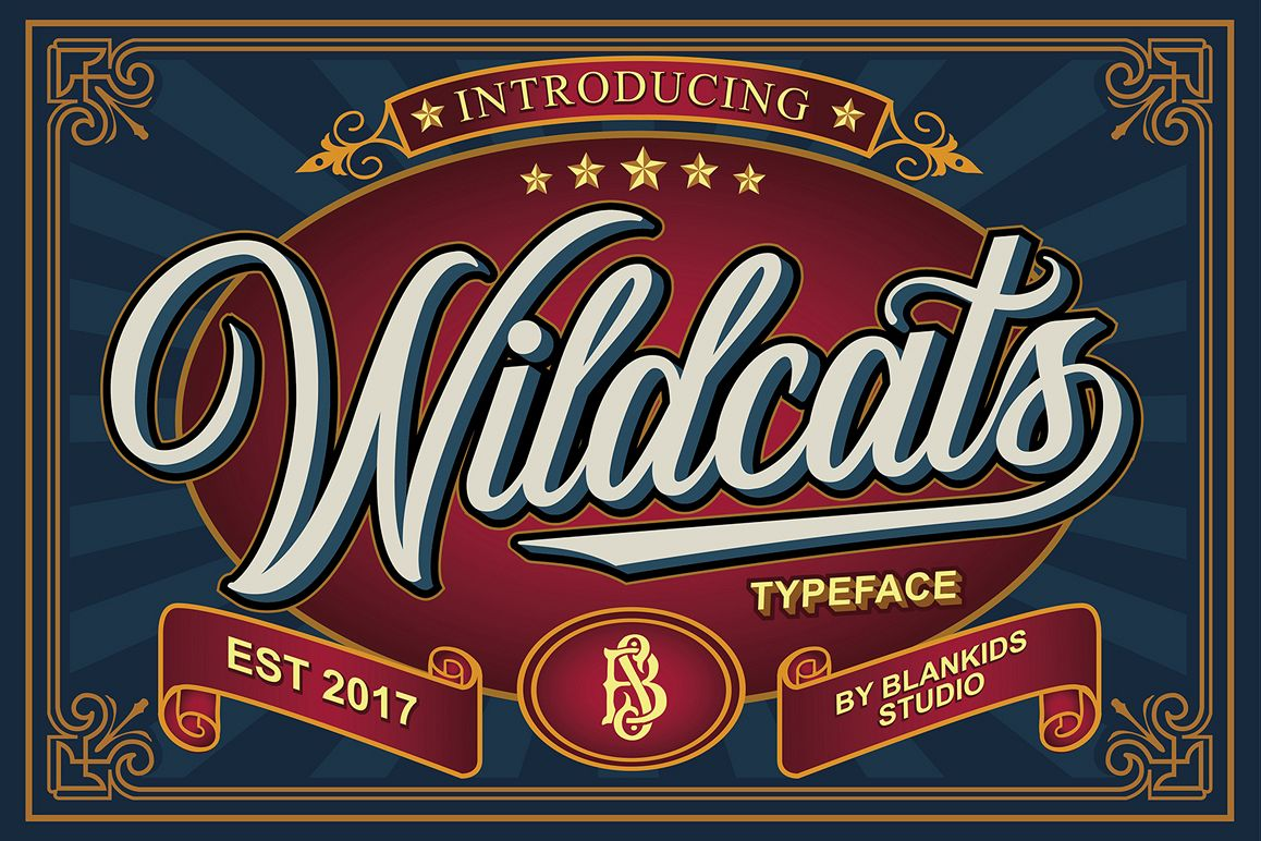 Wildcats Typeface (40% off) example image