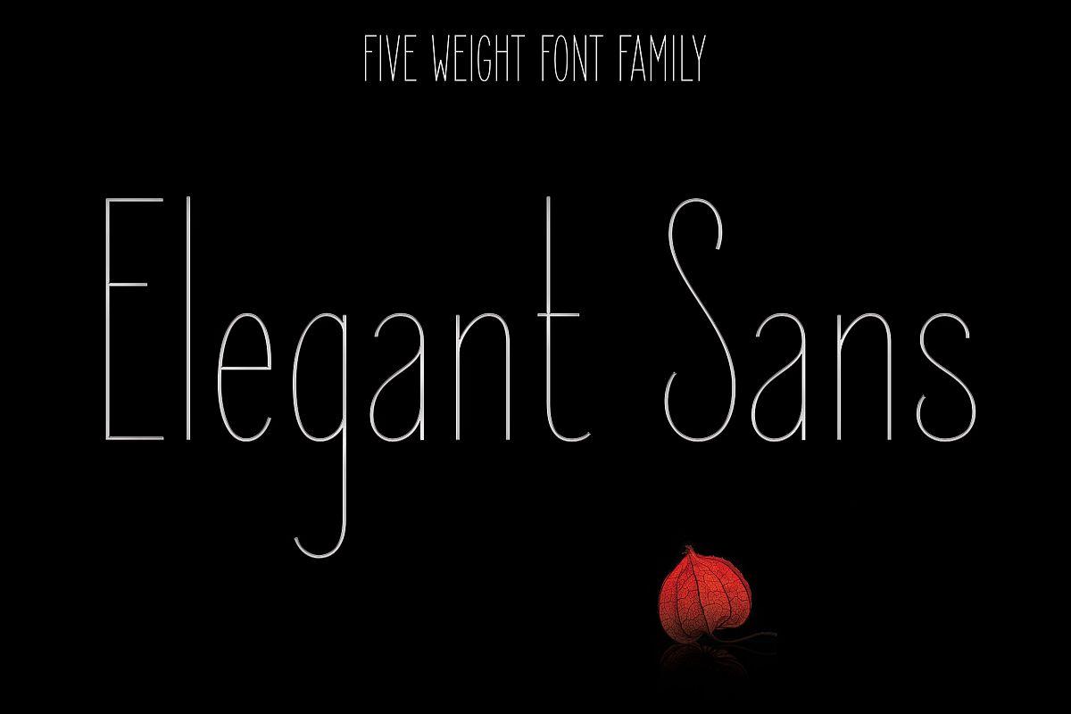 Elegant Sans Font Family example image
