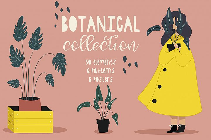 Botanical collection