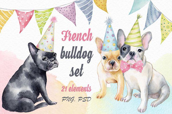 French bulldog set + Bonus