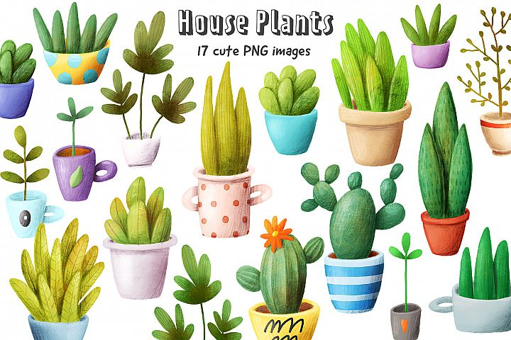 Set of house plants
