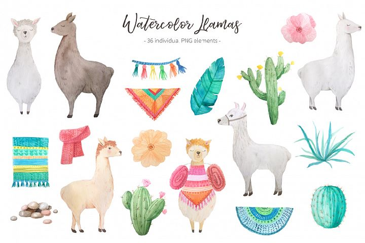 Watercolor Llamas example 2