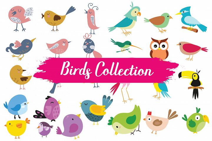 Birds,birds clipart,birds illustrations,birds vector,wild birds,wild animals