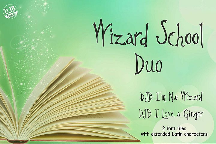 Wizard School Duo