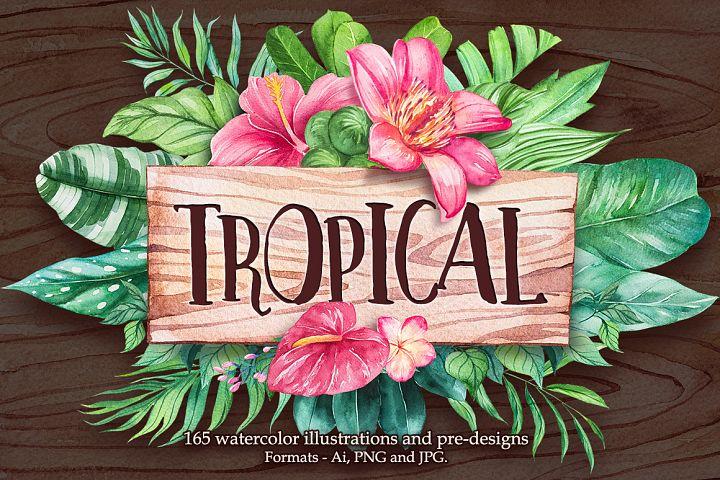 Tropical. Watercolor illustrations.