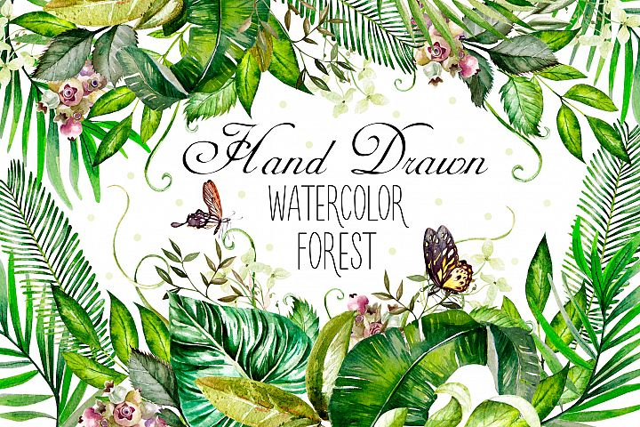 Hand Drawn watercolor Forest