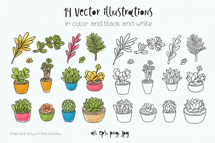 Succulents 14 vector illustrations example 3