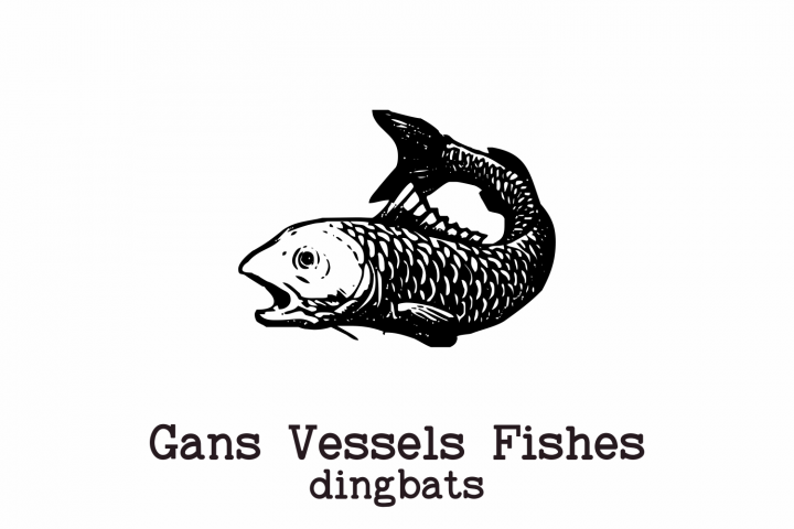 Gans Vessels Fishes