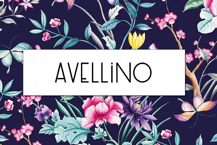 Avellino   Multilingual Sans Serif