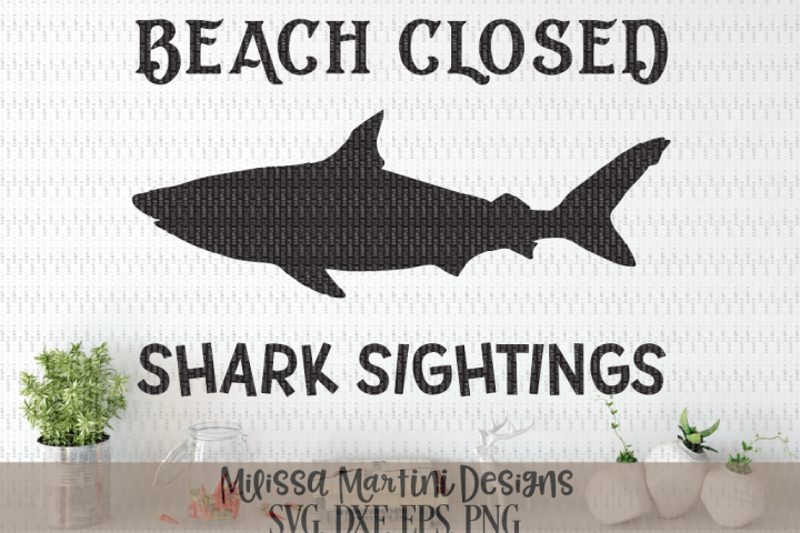 Beach Closed Shark Sightings