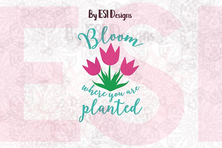Bloom where you are Planted| Quote Design