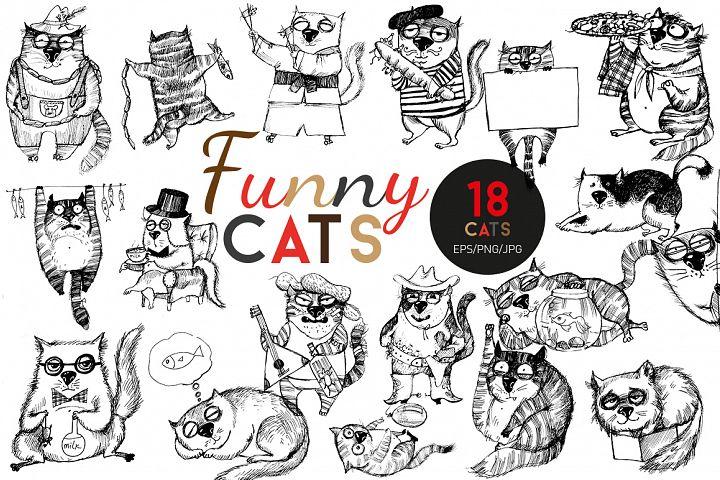 Funny cats. Part 2