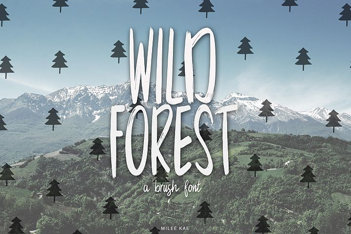 Wild Forest a modern brush font