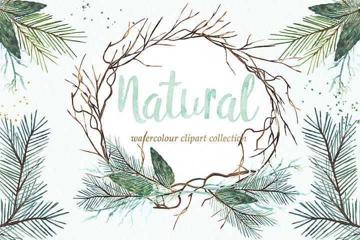 Natural winter. Watercolor clipart.
