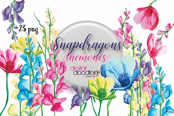 Snapdragons & Anemones