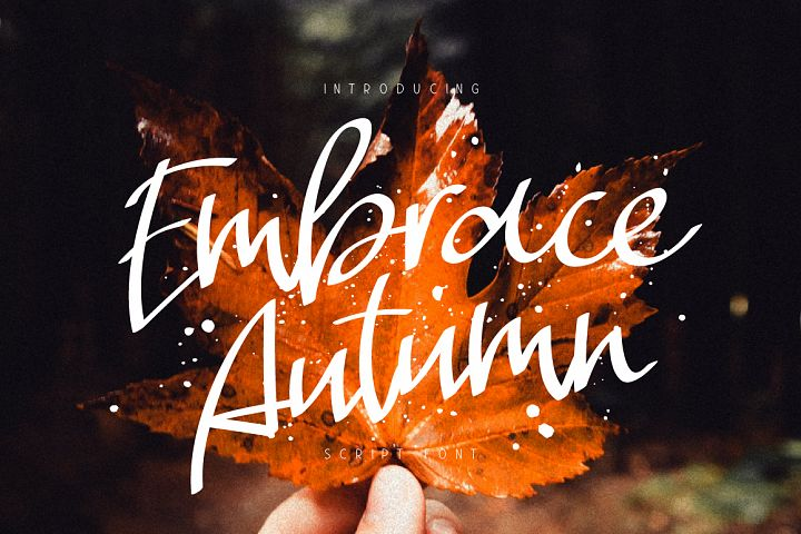 Embrace Autumn