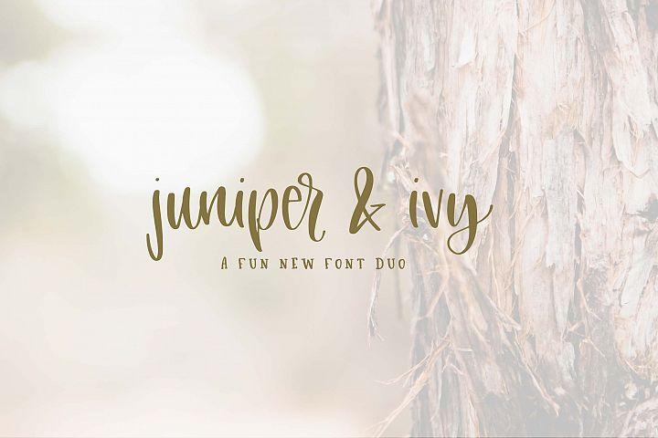 Juniper & Ivy