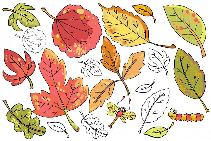 Vector hand drawn leaves example 3