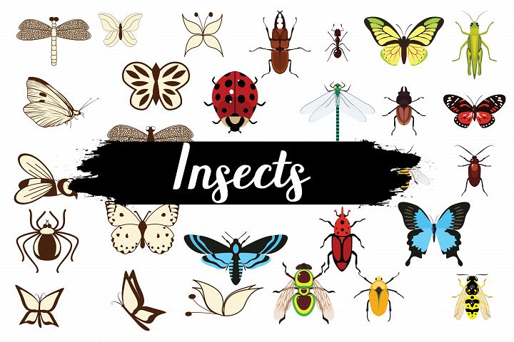 Insects,Insects clipart,Insects illustration,Insects vector,Insects icons,Insects silhouettes