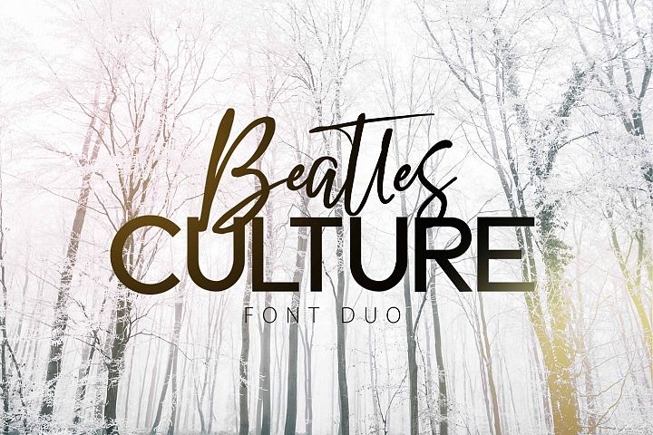 BEATLES CULTURE- Font Duo