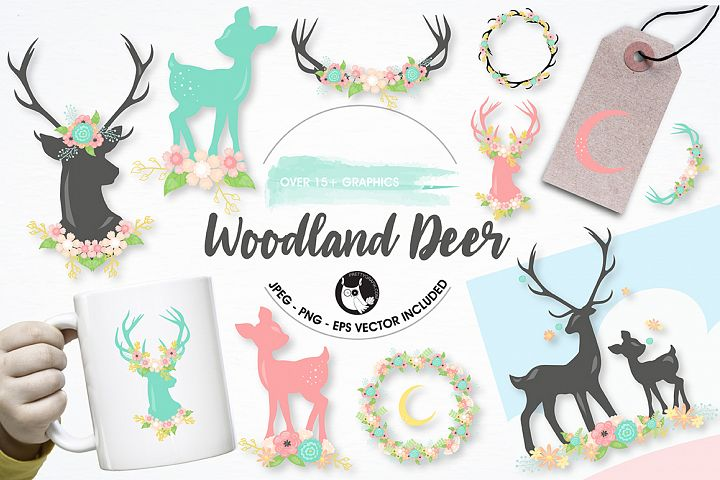 Woodland deer graphics and illustrations