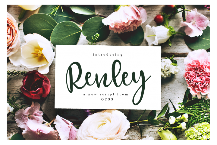 Renley - An Everyday Script
