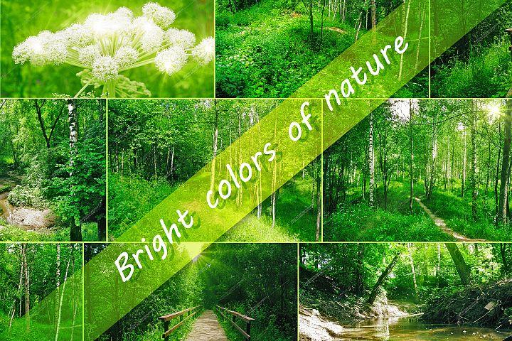 7 Photos of nature