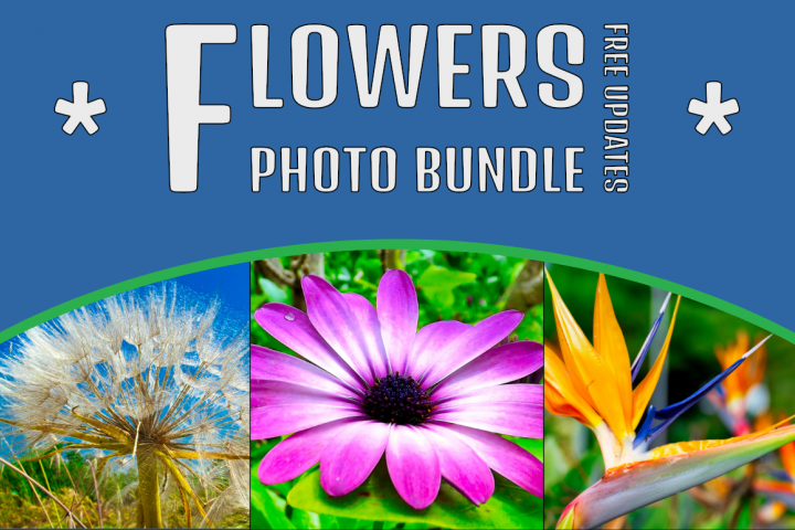 Flowers Photo Bundle