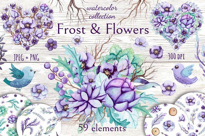 Frost & Flowers