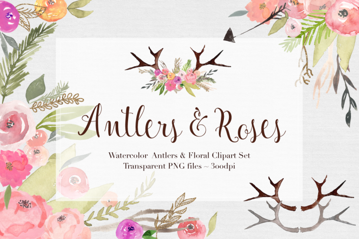 Antlers & Roses Watercolor Clipart