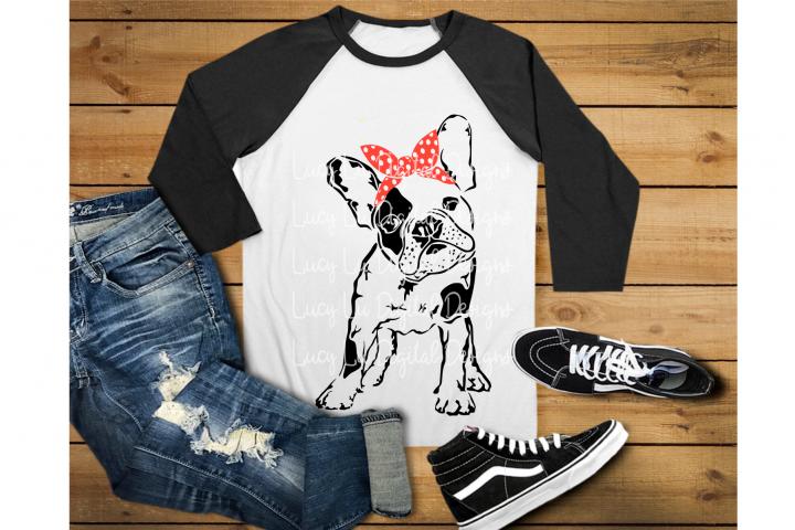 Bandana Dog