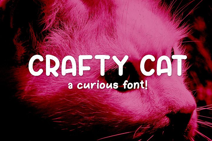 Crafty Cat