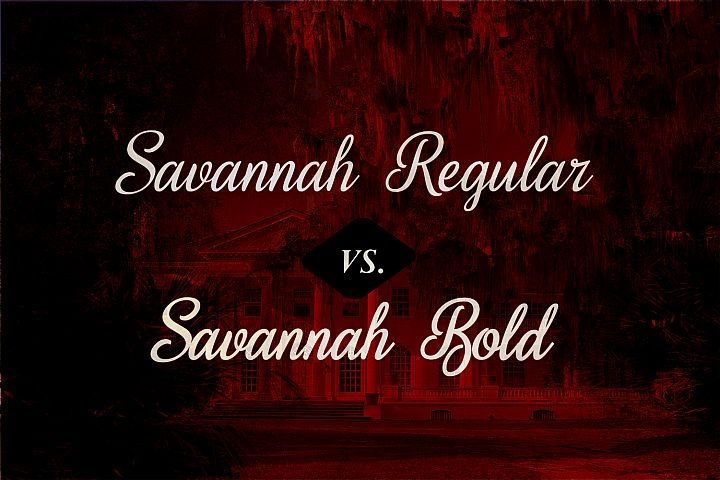 Sweet Home Savannah Font Duo - Free Font of The Week Design 4