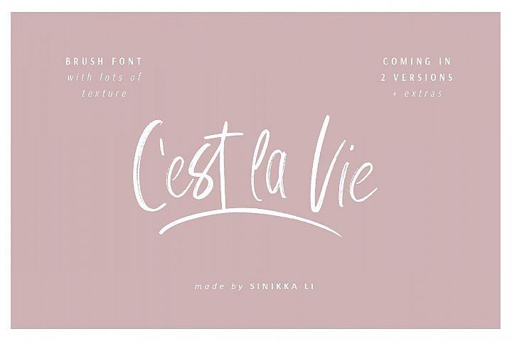 Cest La Vie | Font + Extras