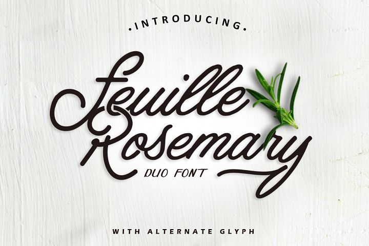 Feuille Rosemary