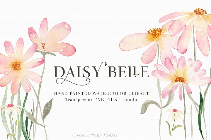 Watercolor Floral Clipart - Daisy Belle