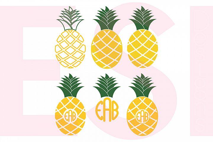 Pineapple Designs and Monograms Set