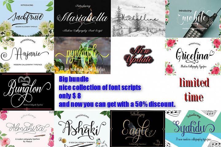Big Bundle (nice collection of font script)